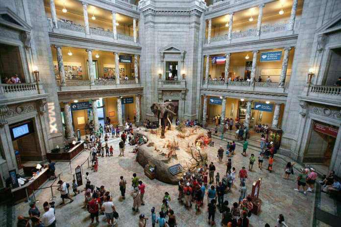 Smithsonian National Museum of Natural History offer many virtual museum tours free