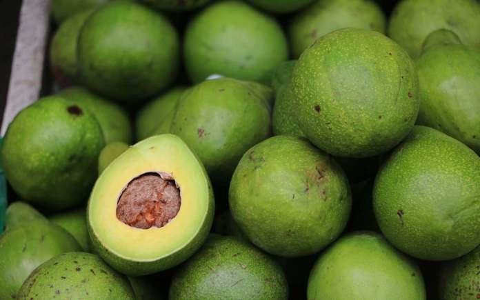 booth avocado fruit