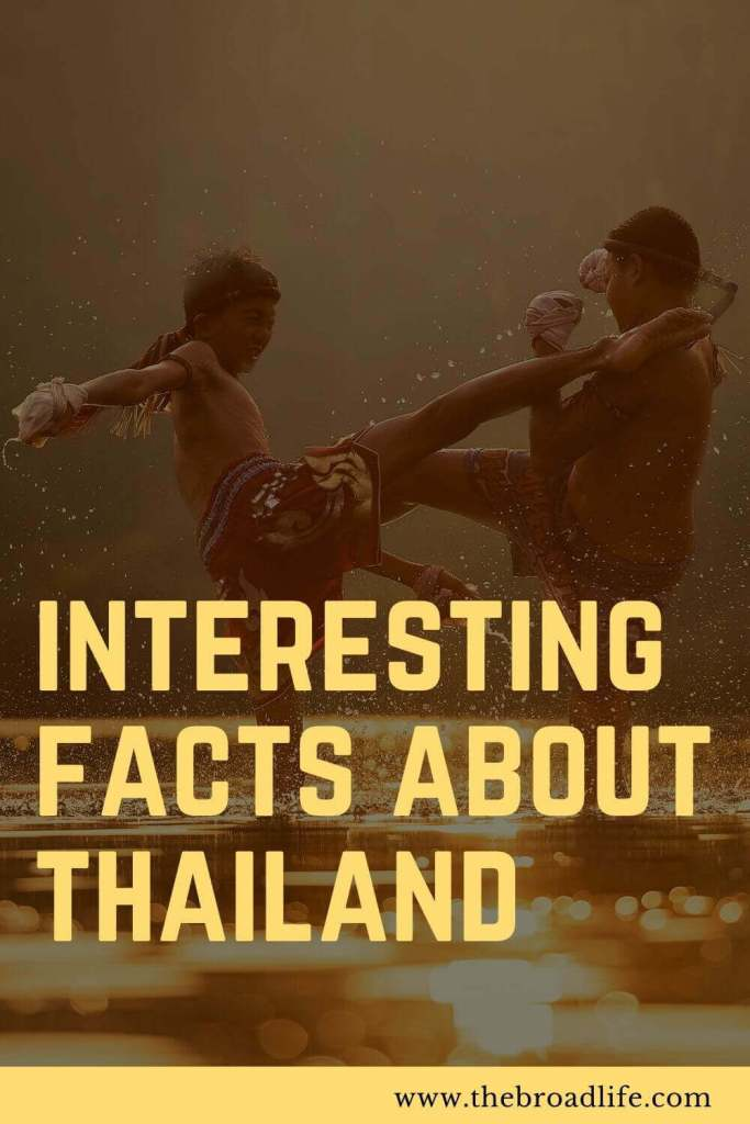 interesting facts about thailand - the broad life's pinterest board