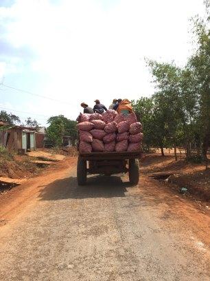 bugiamap-truck-thebroadlife-riding-ontheway