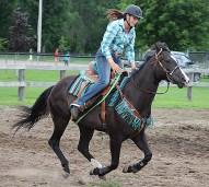 horse plaid shirt 3