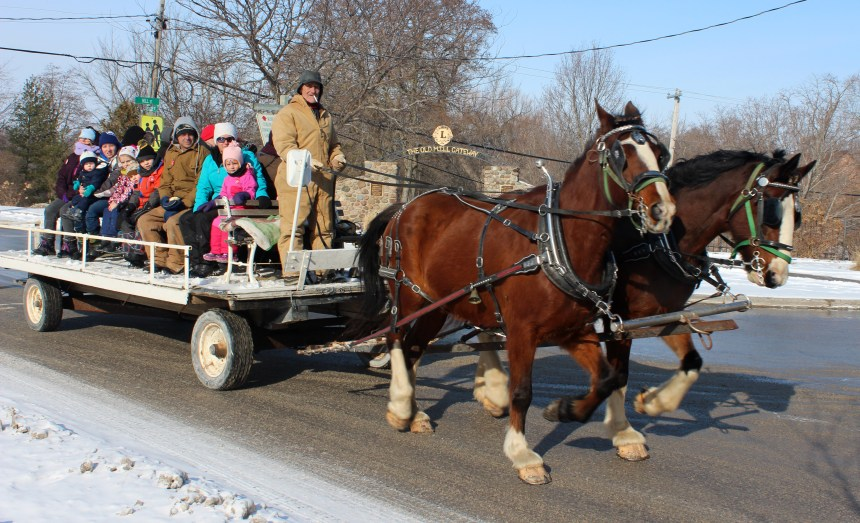 horse wagon