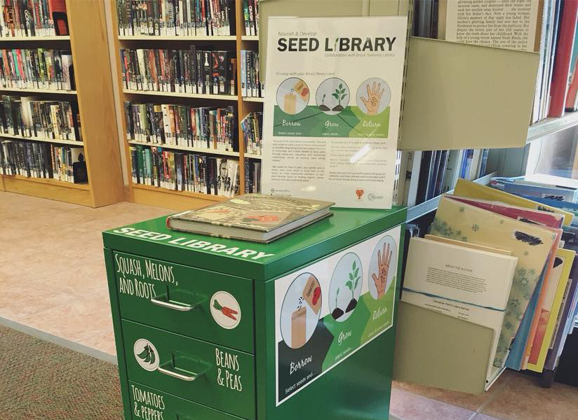 Seed library sprouts up in Brock