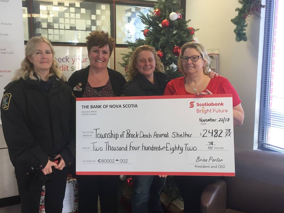 Staff at Scotiabank in Cannington raise nearly $2,500 for animal shelter