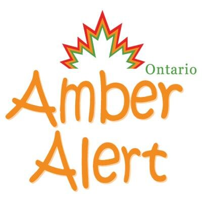 Update: Children found safe after Amber Alert