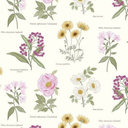 Lewis & Irene - Botanic Garden - Flowers on Cream - A453.1
