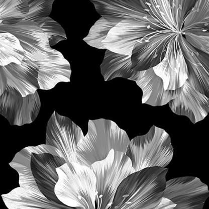 Midnight Paradise by Kanvas Studio - Midnight Flowers - 9881P-12