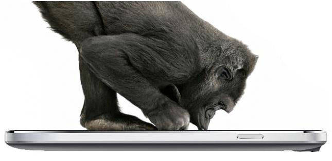 Gorilla Glass in Canvas 4