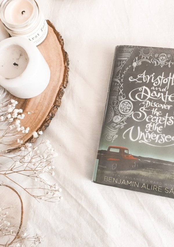 Aristotle and Dante Discover the Secrets of the Universe by Benjamin Alire Sáenz / deserves all the hype