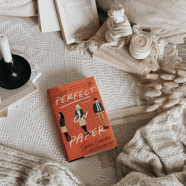 Perfect on Paper by Sophie Gonzales   YA BOOK REVIEW