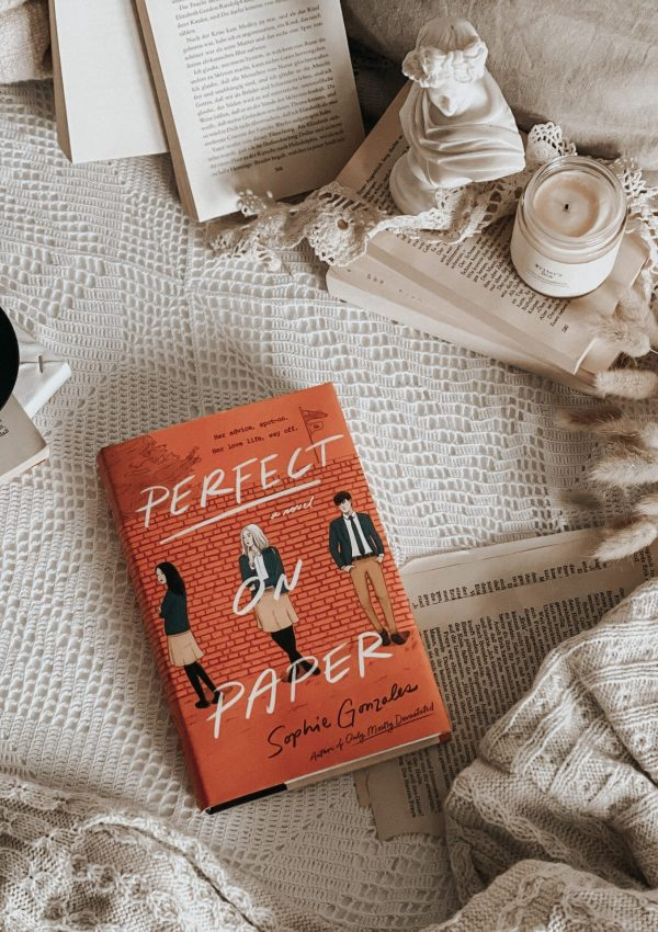 Perfect on Paper by Sophie Gonzales | YA BOOK REVIEW