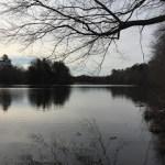 Abbott's Mill Pond