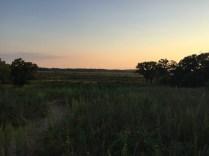 The Sand Prairie