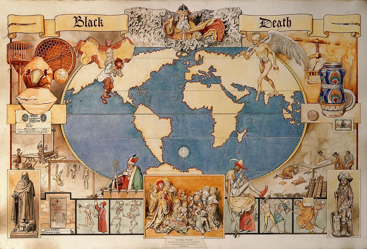 Black Plague Spanish Flu Smallpox All Hold Lessons For