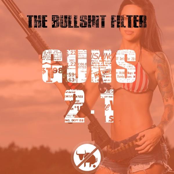 Gun Control 2.1