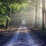 6 Scientific Benefits of Being Outside