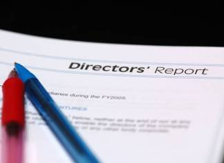 What is Director's Report?