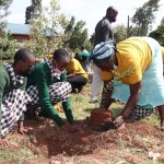 Kenyans Urged To Plant Trees To Mitigate Changing Climate