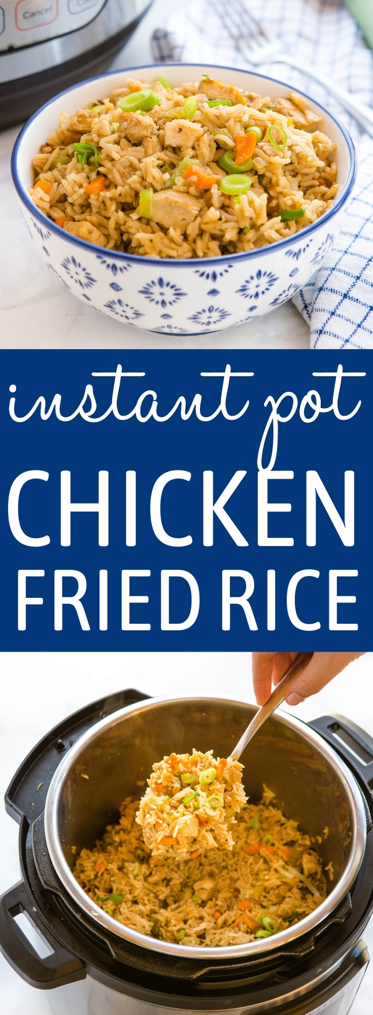 Instant Pot Fried Rice with Chicken Recipe Pinterest