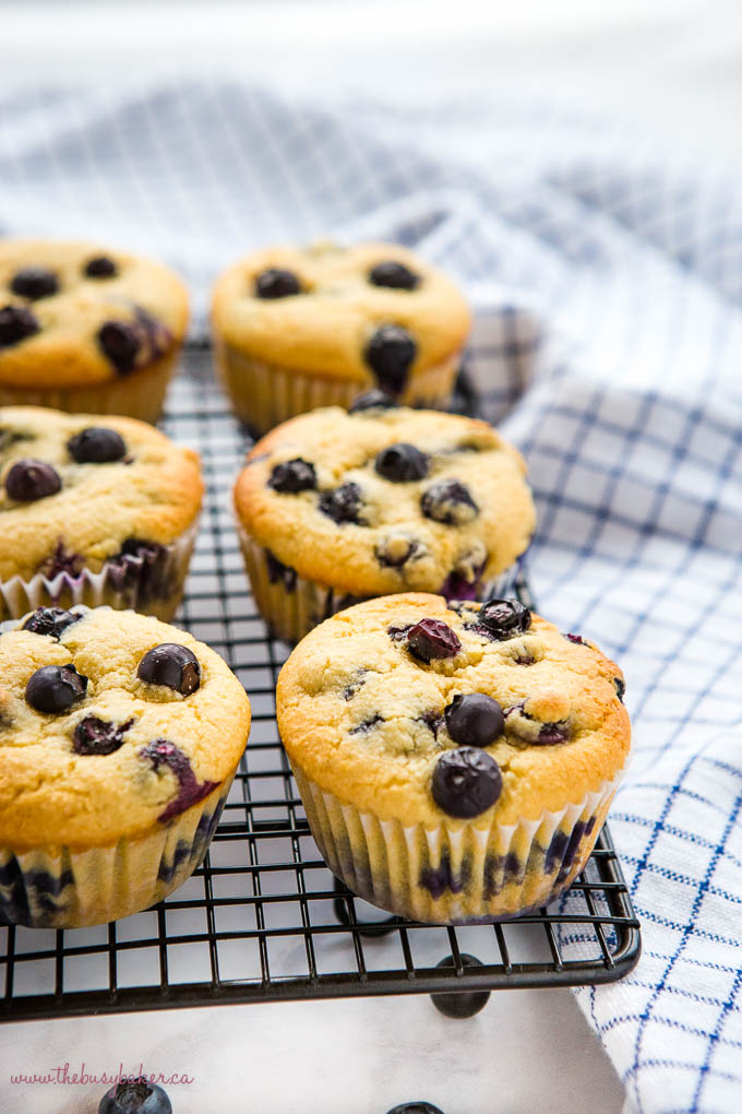 low carb blueberry muffins on black wire rack