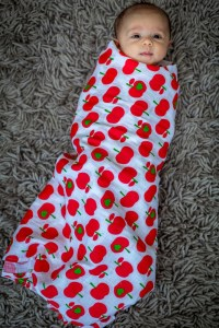 PP - apple swaddle