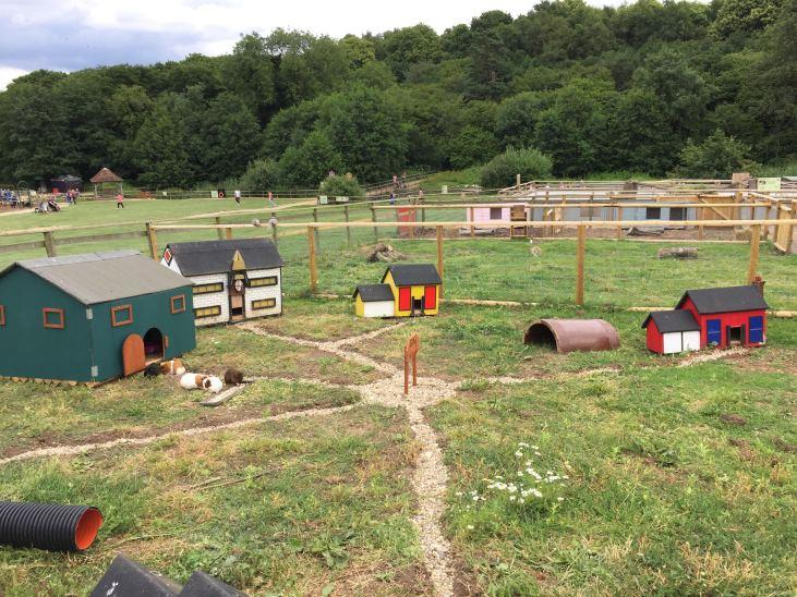 Jimmy's Farm 4