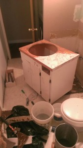 Bathroom Remodel Day 1