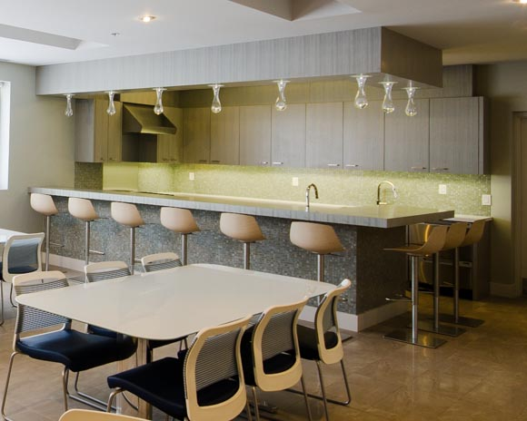 contemporary_kitchen-1