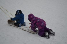 The kids being pulled up the hill on the toboggan