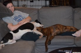 Lindy & Marley resting together with Mom after a hard day of exercise.