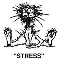 Stressed Cat Cartoon