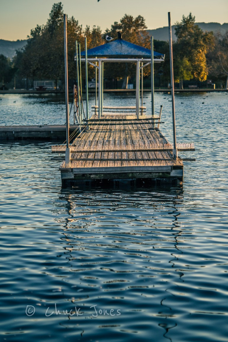 Bird Proof Dock = Sony A7R, Leica 90mm Elmarit @f/2.8, 1/1250 sec, ISO 100