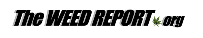 CURRENT CANNABIS NEWS – TheWeedReport.org