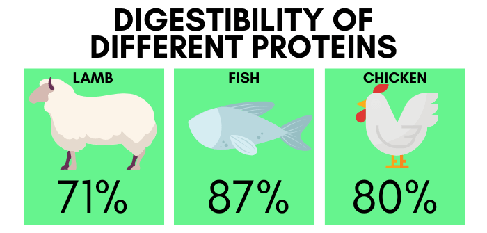 Digestibility of Lamb, Fish and Chicken