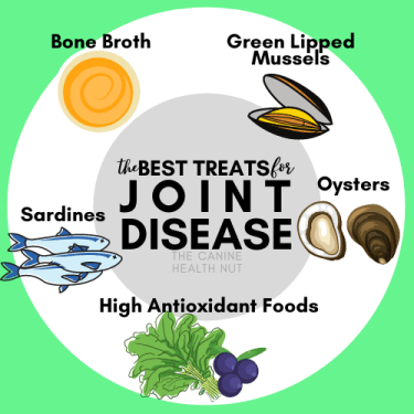 the best treats for joint disease in dogs
