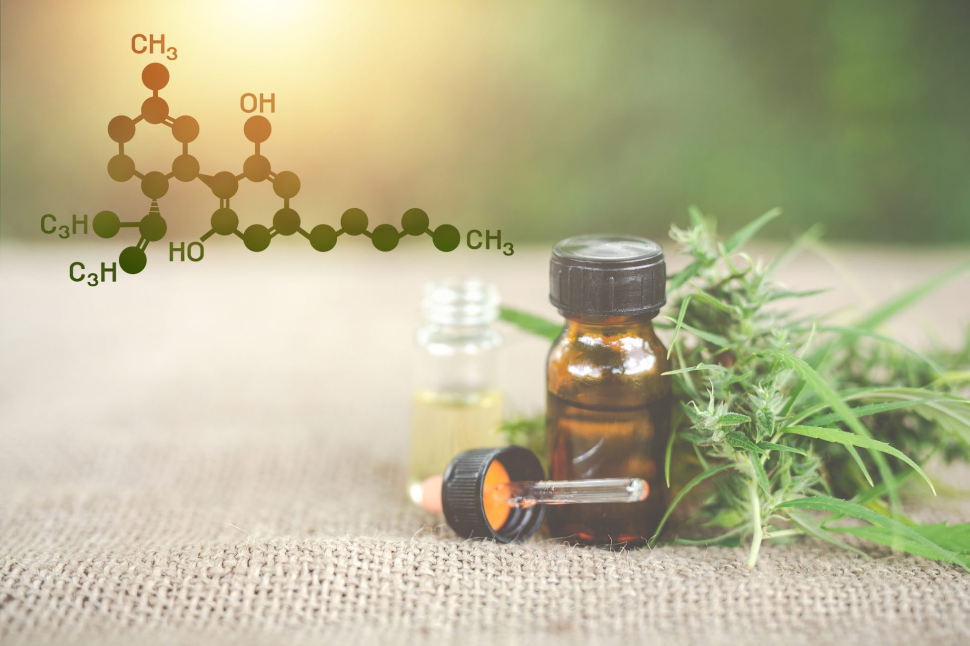 Member Blog: Five Common Misconceptions About CBD |