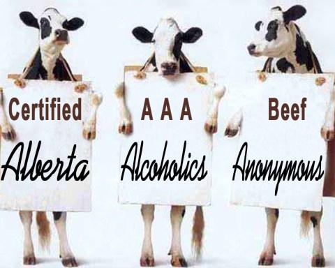 Alberta Alcoholics Anonymous