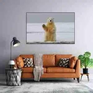 hello-polar-bear.jpg