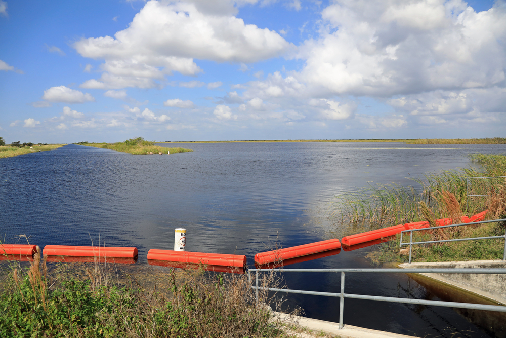 Roth and Simmons Propose Common-Sense Solutions to Lake Okeechobee Discharges