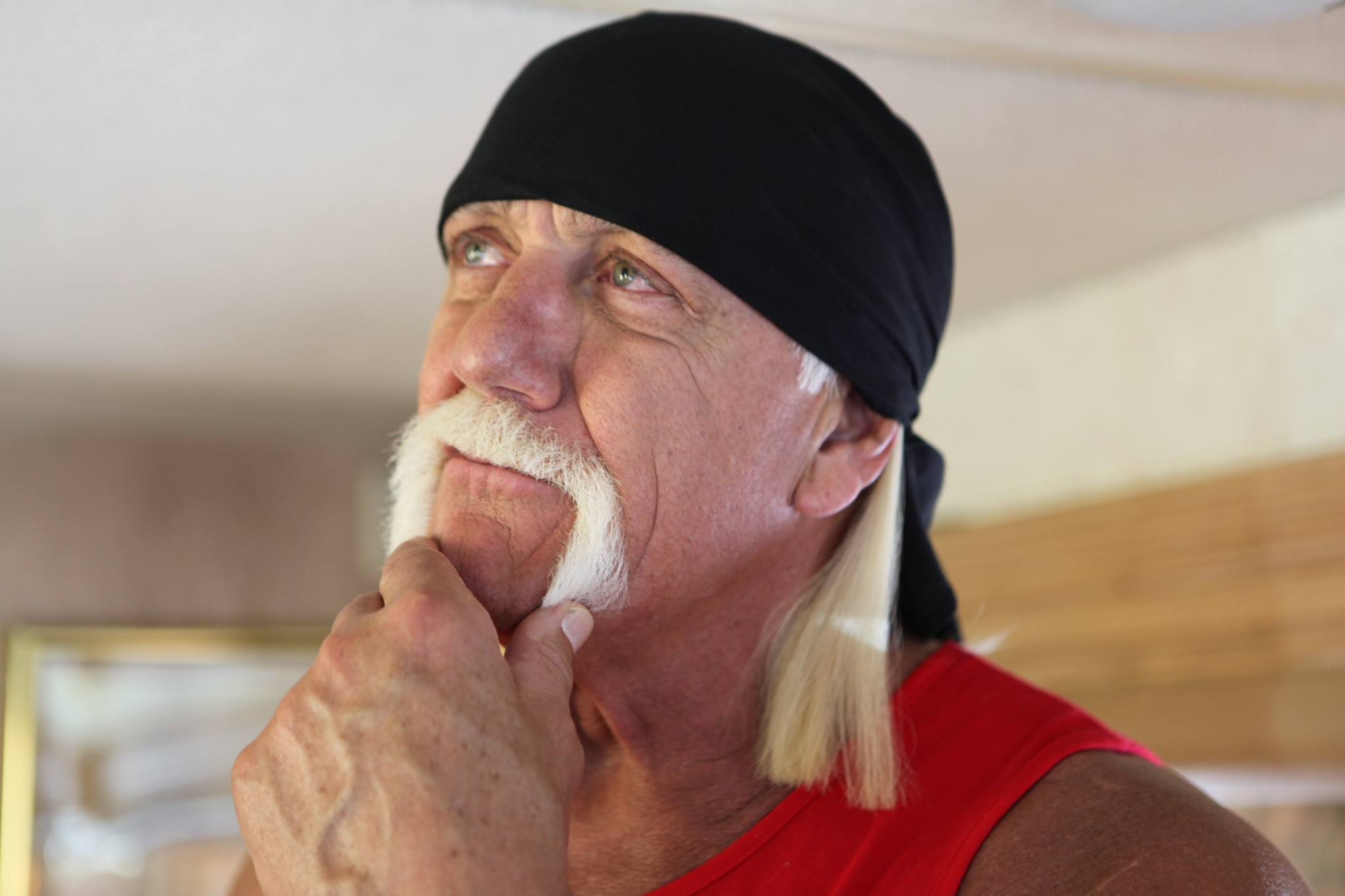 Sorry, Florida: Hulk Hogan doesn't want to be your senator