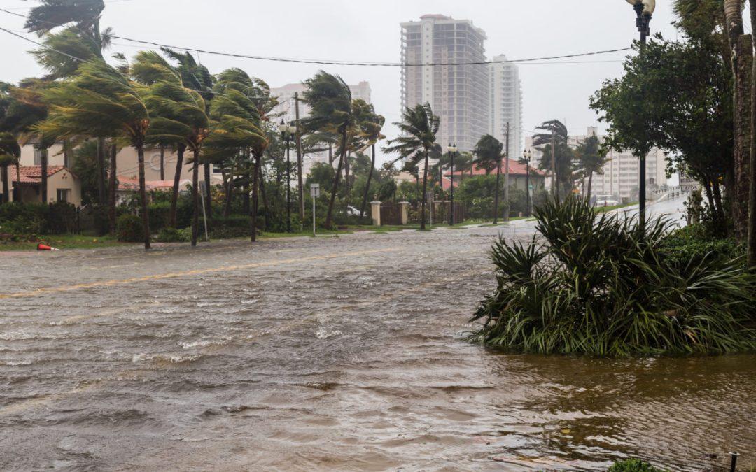 With Hurricane Season Looming, What Happened to Post-Irma Hurricane Prep Initiatives?