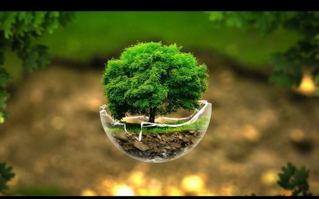 Monday Mailbag: Earth Day Wacko Edition
