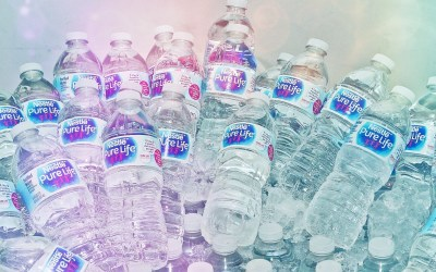 Nestle Waters prevails in challenge to Ginnie Springs water bottling permit