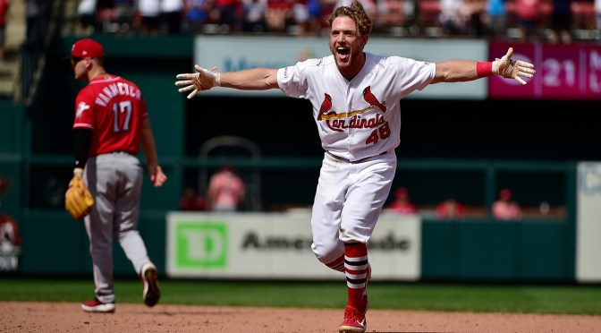 The Cardinal Nation   First-hand news and commentary on the