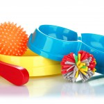 dog toys and equipment