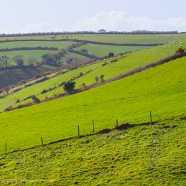 Irish Countryside, County Kerry, Ireland