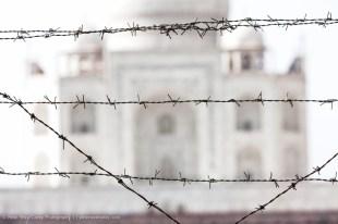 Wire Before The Taj Mahal, Agra, India