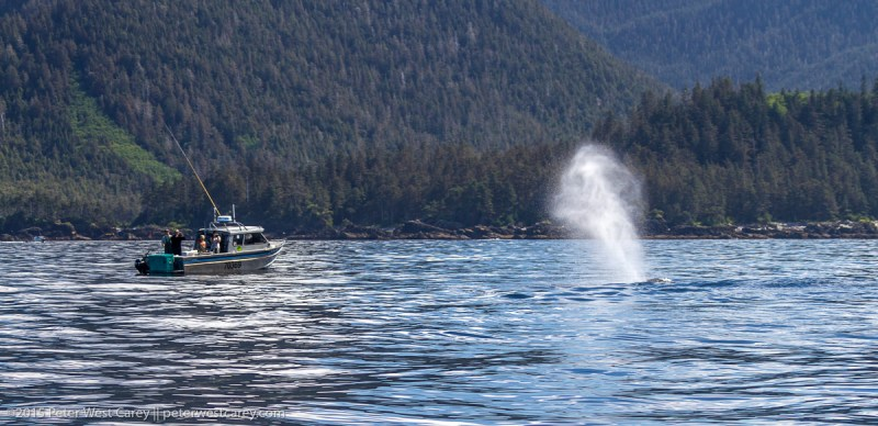 Peter-West-Carey-Alaska2015-0617-9750