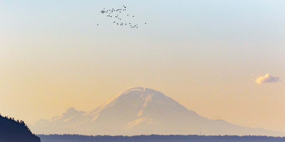 Photo Of The Day – A Beautiful Puget Sound Morning With Mount Rainier