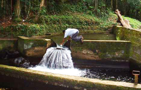 St. Kitts & Nevis faces water shortage